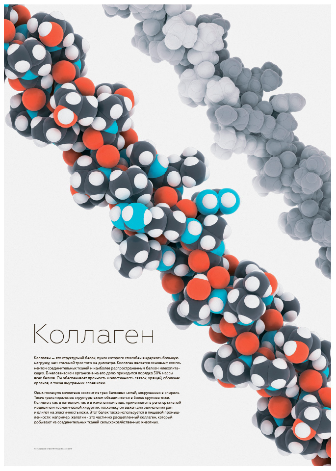 Collagen molecule poster