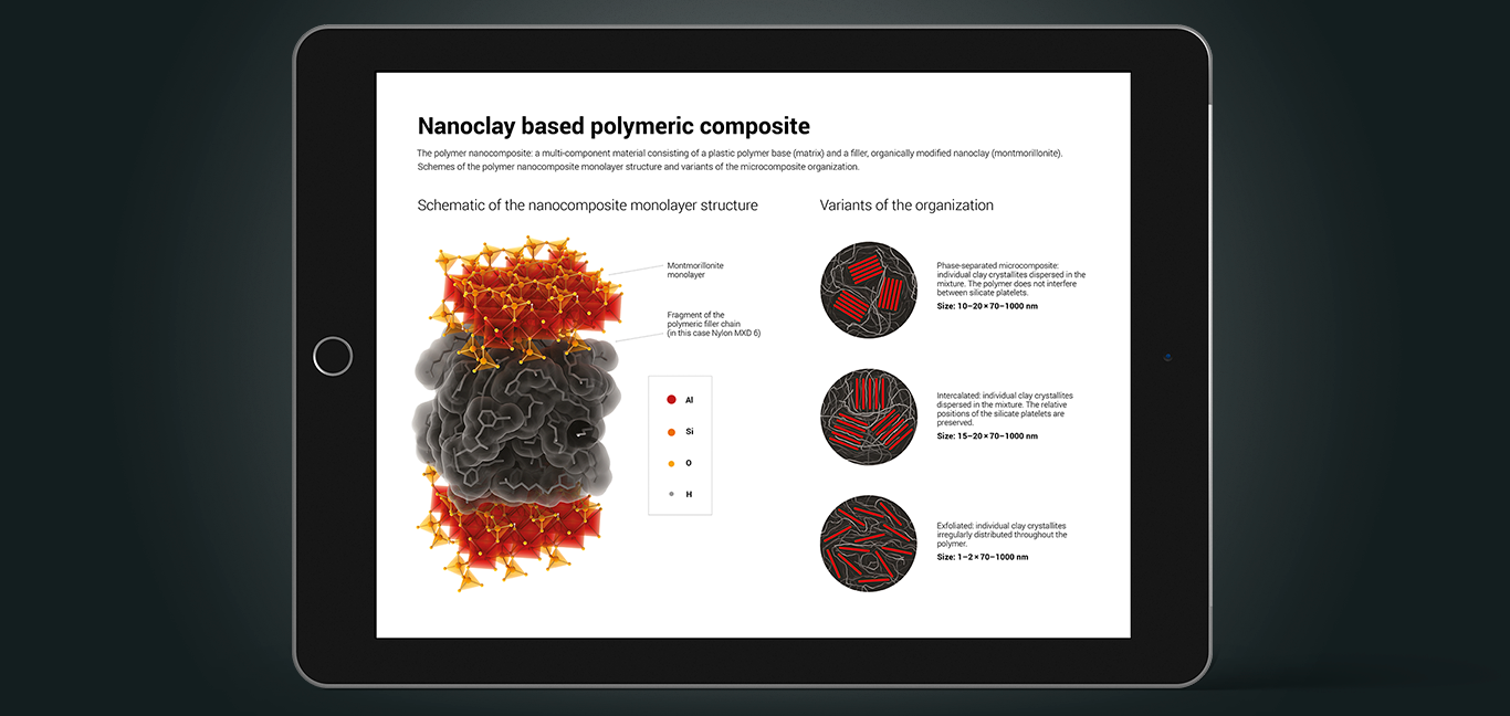 Technical illustration of the silicate nanocomposites structure