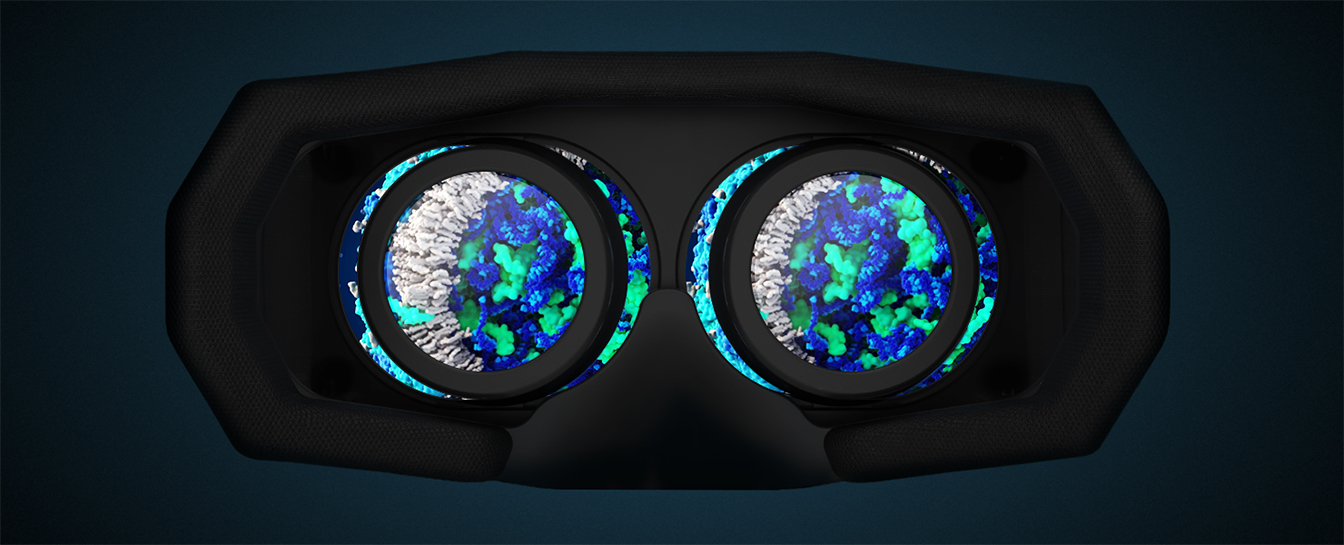 Virtual reality anumation virus zika
